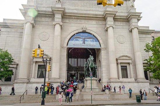 תמונה מUnited States New York Tickets for American Museum of Natural History