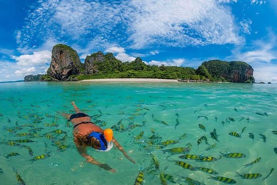 Phi Phi Islands Half Day Tour From...
