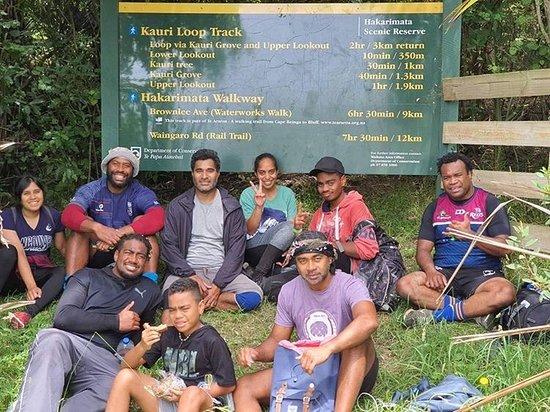 Kauri Loop Track