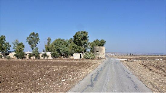 אום קייס, ירדן: Beautiful countryside