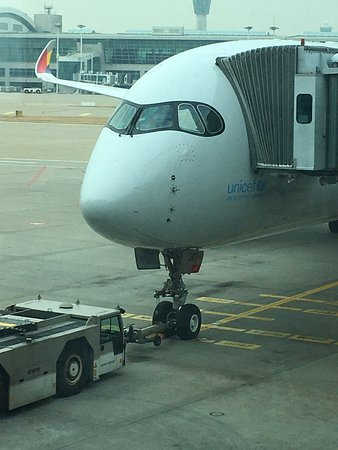 Asiana Airlines: 2019-12 OZ1055 TYO - SEL OZ5175 SEL - LIS  A350のエコノミーはかなり狭かったけど、逆にプロモーションかける写真の仕上がりに。