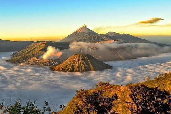 1 Tag Bromo Private Tour mit ...