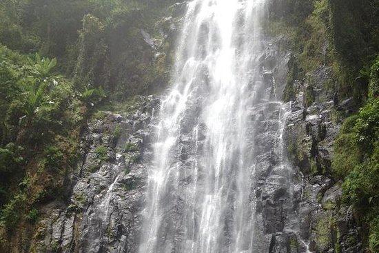 Visite des cascades et du café de...