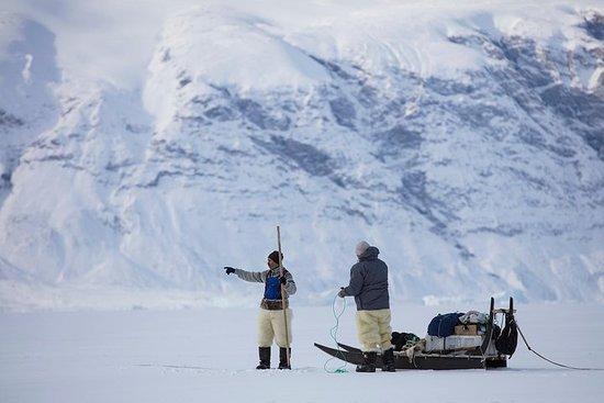 在乌曼纳克(Uummannaq)畅游北极冬季仙境5天