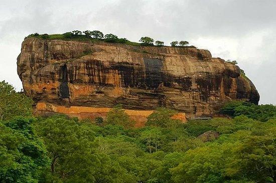 Tagestour nach Sigiriya & Dambulla...