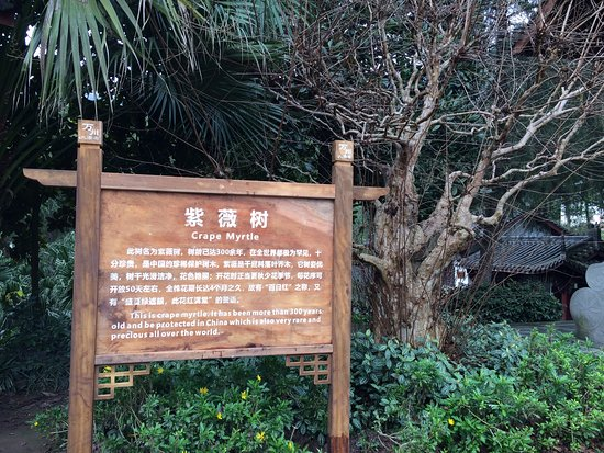 Tatsumidaiichi Parking Area Inbound