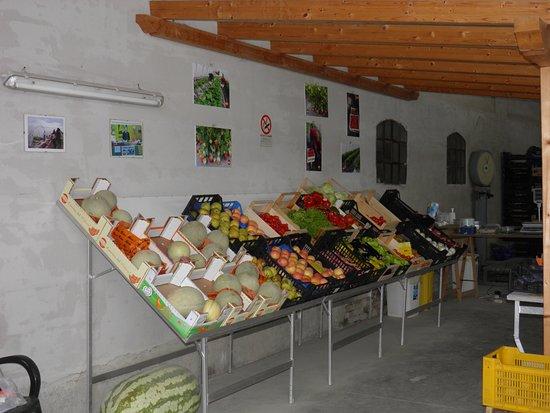 Azienda Agricola Longhi Dino e Andrea