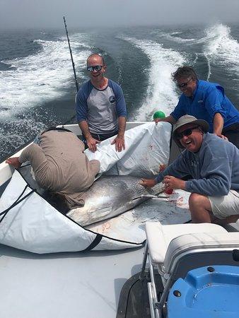Bluefin Tuna Charter