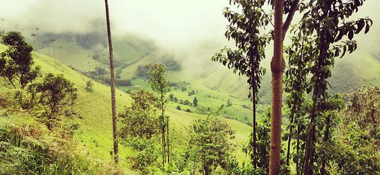 I am Colombiano: COCORA