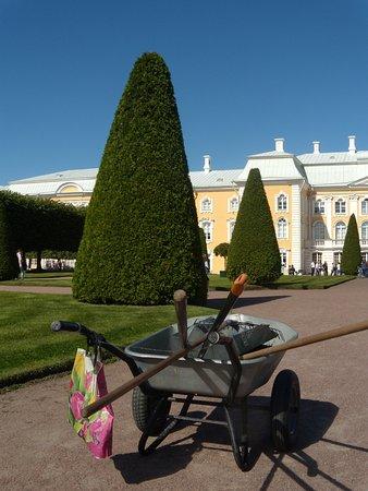 Peterhof, Venäjä: Петергоф