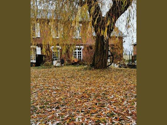 Morgny, France: Brocante/boutique/atelier/jardin ouvert le weekend 10/18 heures. N'hésitez pas à venir nous rencontrer.