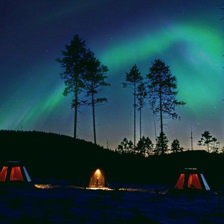 Vindeln, Sverige: Aurora Borealis Adventures