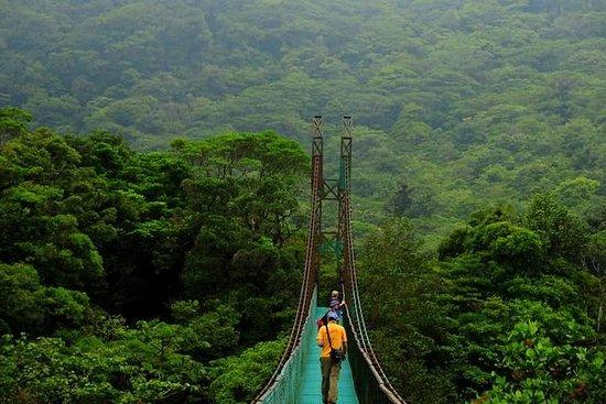 Monteverde Cloud Forest Suspension...