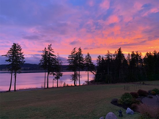 Union Bay, Canada: Just an ordinary sunrise