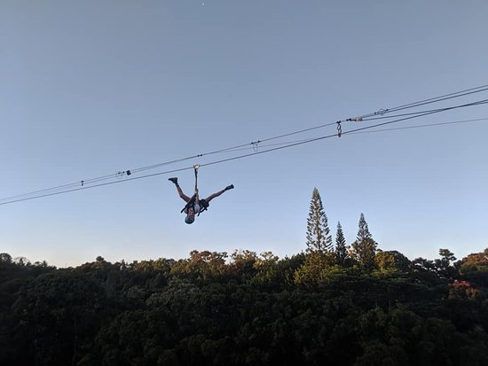 9-Line Zipline Experience: One of the young dare devils