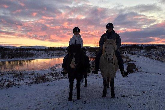Promenade à cheval privée au lac Hafravatn au départ de Reykjavik