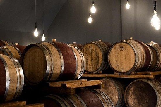 """Dégustation """"Le Bessole"""" de vins de Valpolicella à la cave Accordini"""