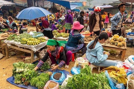 Sapa, visite du marché de Bac Ha...