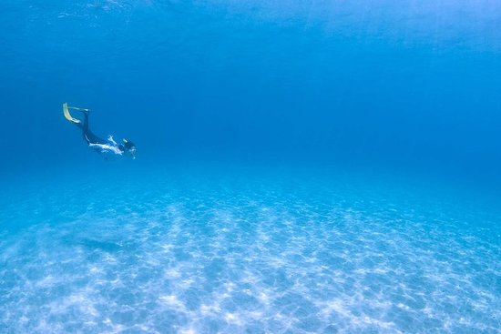 Snorkelguide