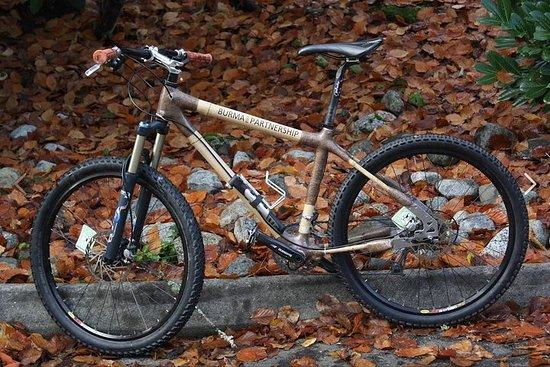 Bamboo Bike Rental