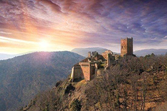 Excursión privada de medio día a Alsacia con conductor