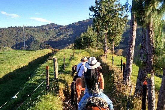 paseo a caballo caminos rurales