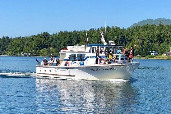 Hvalsafari og sightseeingtur i Ucluelet, Vancouver Island