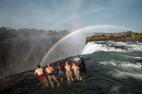 Expérience Devez Pool / Livingstone...