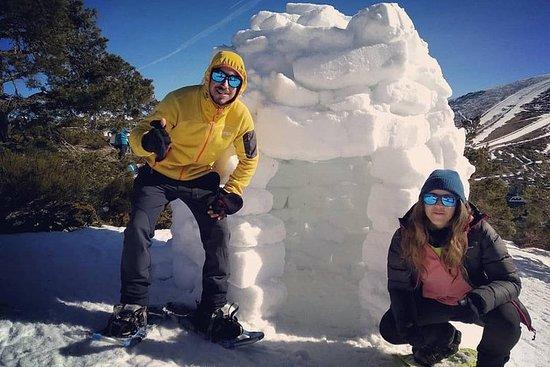 Raquetas de nieve en Madrid, construcción de iglú + trineos