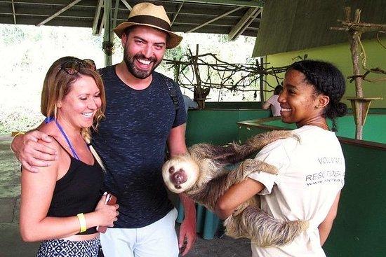 Combo: Monkey Island und Sloth...