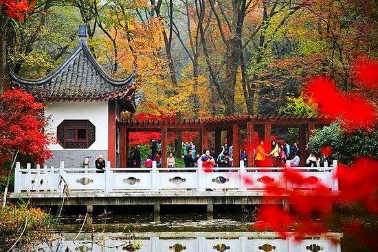 Nanjing Purple Mountain Private Tour...