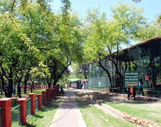 Manda National Park