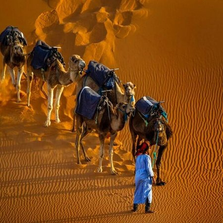 English Moroccan Tours