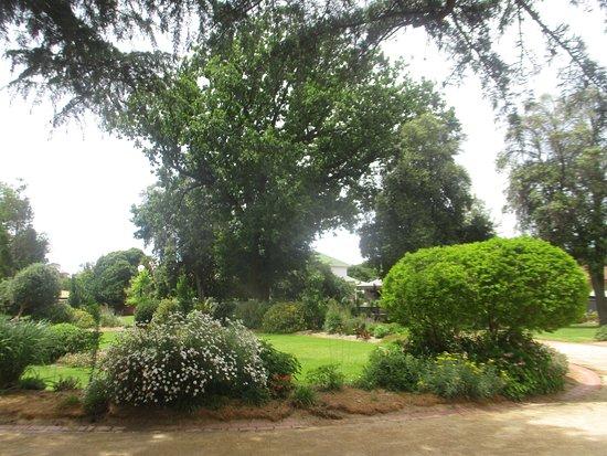 Eaglehawk, Australia: Garden