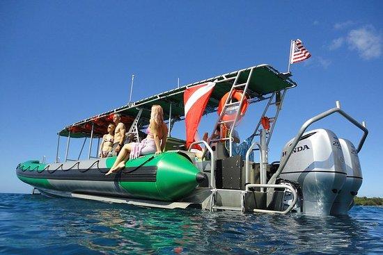 Deluxe West Maui Snorkel Tour fra Ka'anapali