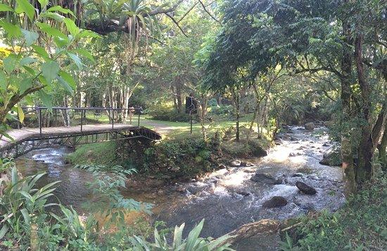 Natureza e paz!