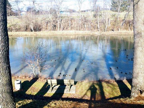 Herminie, Пенсильвания: The fishing lake