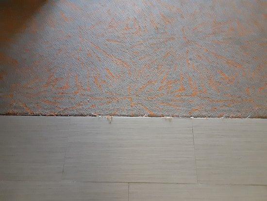 carpet meets tile is frayed