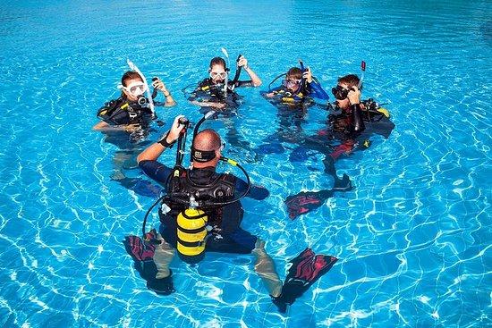 Cours de plongée Open Water de Sydney