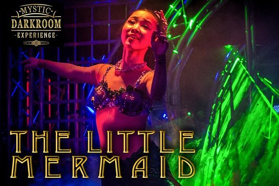 Skip the Line: The Little Mermaid at Mystic Dark Room Ticket