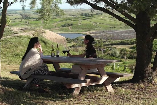 Great Transfer - Guided Tour - Wine...