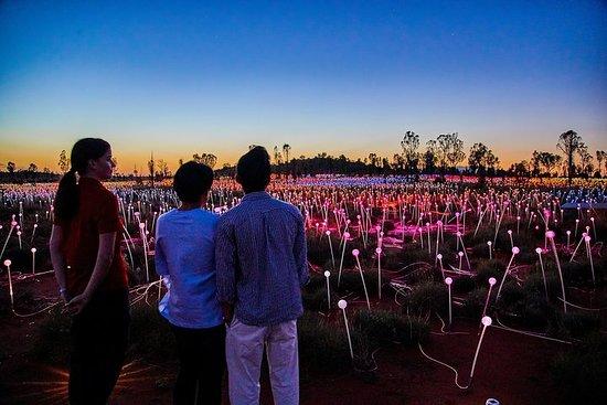 Excursion Field of Light à Uluru au...