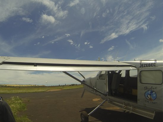 Carletonville, แอฟริกาใต้: Our plane for the day