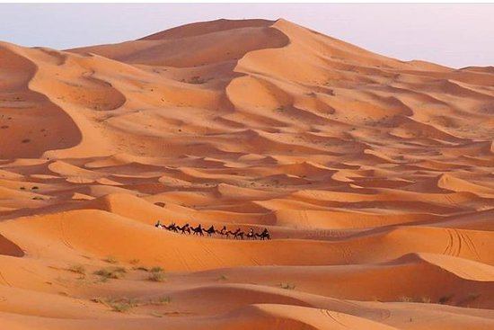 Personalised Morocco Tours