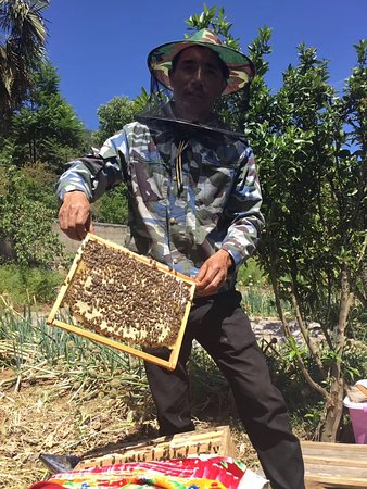 Showing local people how they make honey.