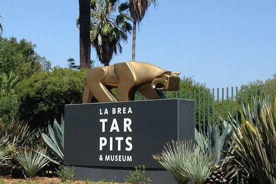 La Brea Tar Pits Admission and Transportation from Anaheim/Orange County. 사진