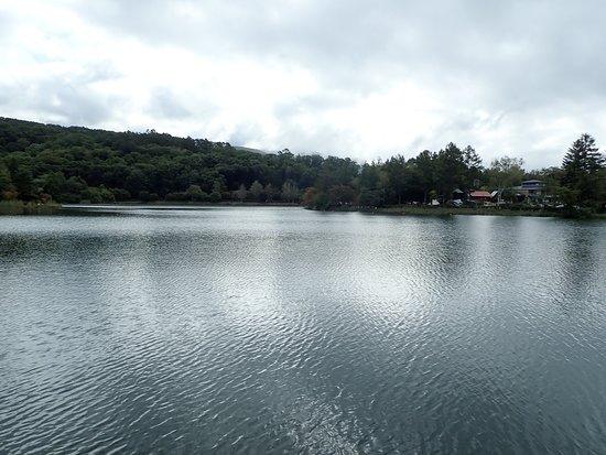 蓼科湖の様子。穏やかで美しいです。