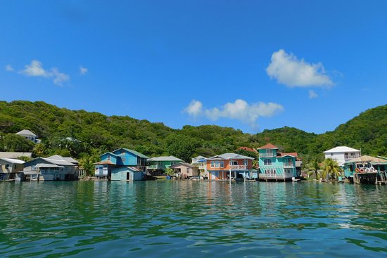 Roatan Robert Tour