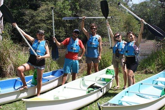 Tour panoramico in canoa nell'entroterra di Noosa