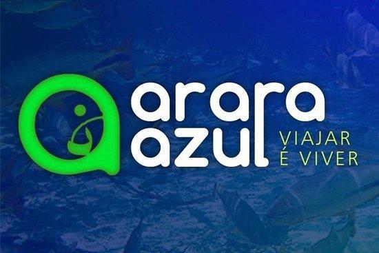 Agencia Arara Azul